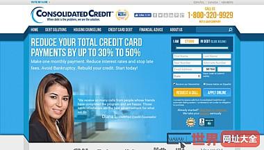 综合信用咨询-债务咨询债务