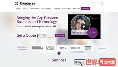 软件开发英国开发商蓝莓顾问