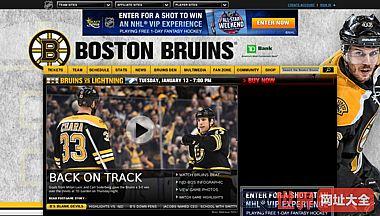 波士顿官方网站nhl.com棕熊