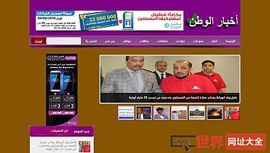 国内新闻网站