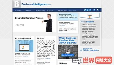 商业智能BI