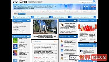 Portal wiedzy o BHP - Centralny Instytut Ochrony