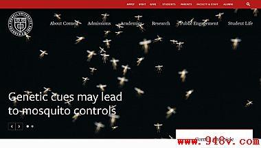 美国康奈尔大学官方网站