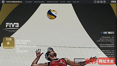 Fédération Internationale de Volleyball (FIVB)